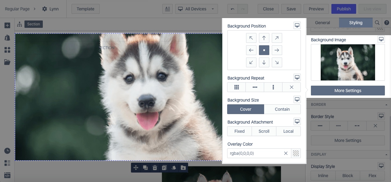 create a section with image and text pagefly